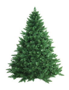 Recycle your used Christmas Tree
